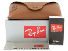 Päikeseprillid Ray-Ban RB4202 - 6069/71