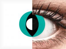 CRAZY LENS - Cat Eye Aqua - Ühepäevased läätsed 0-tugevusega (2 läätse)
