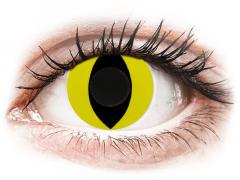 CRAZY LENS - Cat Eye Yellow - Ühepäevased läätsed 0-tugevusega (2 läätse)